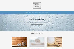 Parker Ithemes Template
