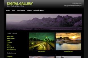 Digital Gallery Theme