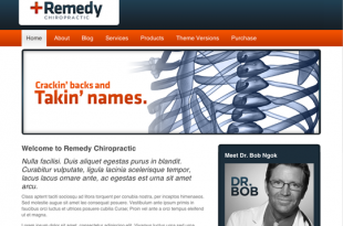 Remedy Chiropractic Theme