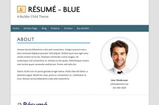 Resume Blue Theme