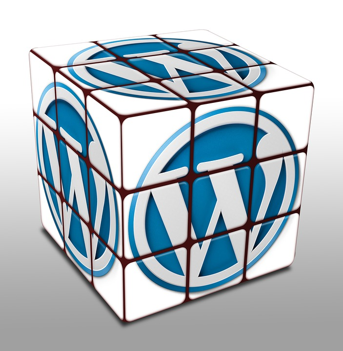 WordPress Email Puzzle